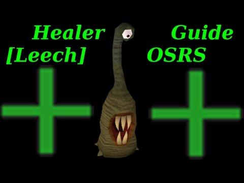 Barbarian Assault Healer Role - Food Spacing Guide