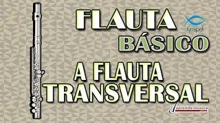 Aprenda Música - Aprenda Flauta Gospel - Básico - A Flauta Transversal
