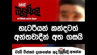 Balumgala - හැටරියන් කන්දටත් අන්තවාදීන් අතගසයි - 31st August 2017