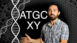 6-Letter DNA!