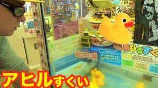 アヒルすくって景品GET!!【UFOキャッチャー】 PDS thumbnail