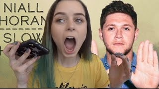 NIALL HORAN SLOW HANDS REACTION Mp3