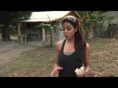 Building new homes in Haiti post-earthquake | Discovery Channel | ALIYA-JASMINE