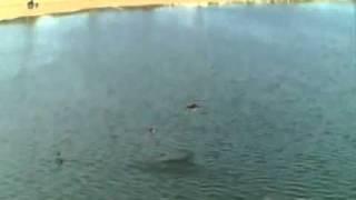 Vol au dessus du lac de Villeneuve de la Raho