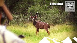 Hunting Kudu - Fieldsports Africa, episode 8