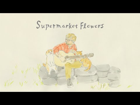 "Ed Sheeran – ""Supermarket Flowers"" Yoriko Hoshi Version"