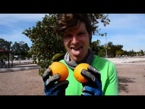 Bicycle Touring Ep. 16: Baja California Sur (Part 1 of 2)
