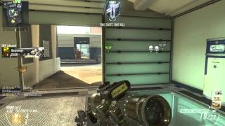 Black ops 2 PC Sniping (Short Clips)