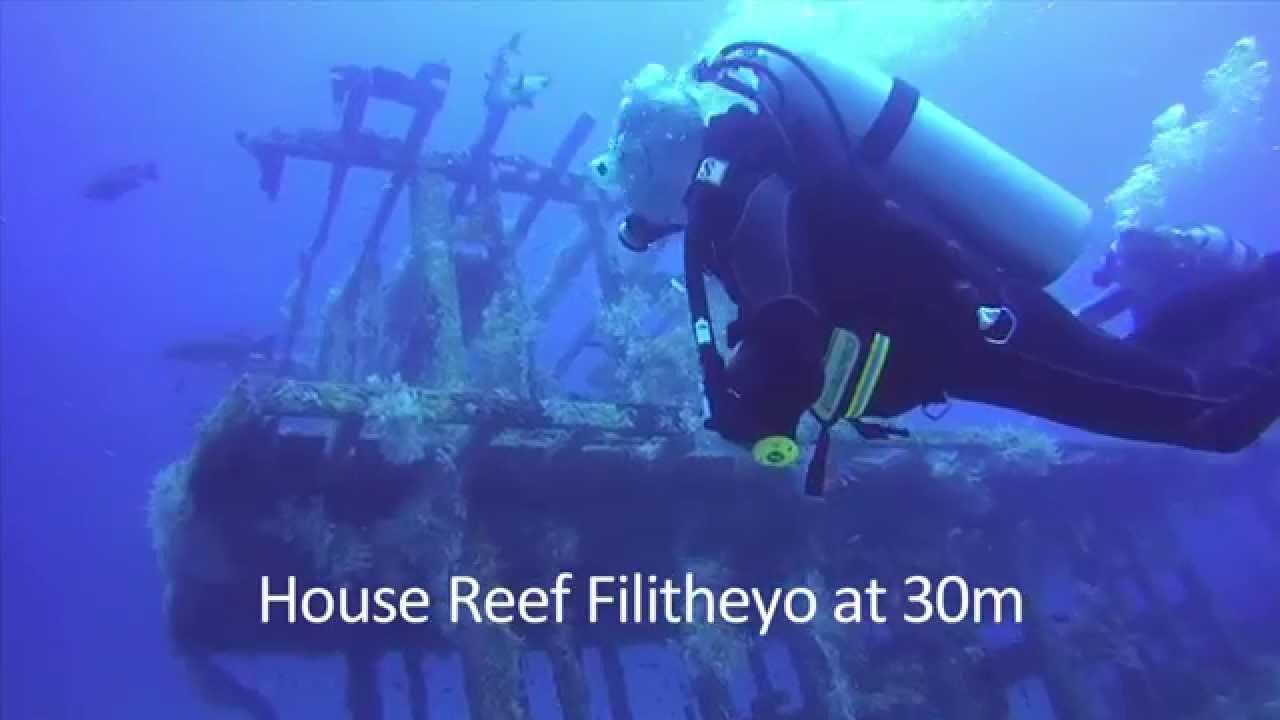 Gbl Hd: Filitheyo Wreck Diving HD 720p