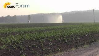 Утренний полив фермерского картофеля(АгроФорум ждет Вас http://agroforum.by/, 2015-06-04T19:12:37.000Z)