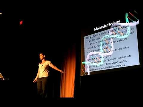 Dash Masland, 16 August 2011: Bigelow Laboratory Cafe Scientifique