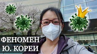 Как Корея борется с коронавирусом