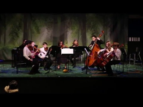 MS and HS Strings Concert - March 2016