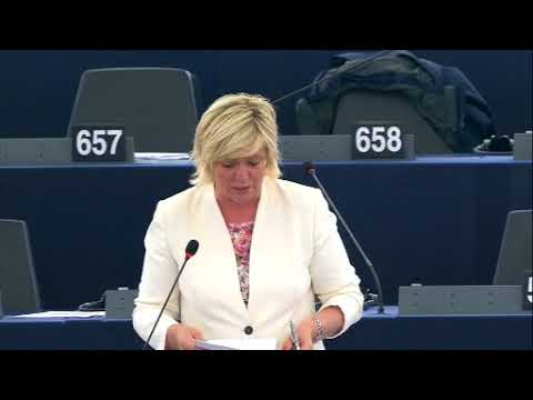 Hilde Vautmans 14 Sep 2017 plenary speech on Myanmar
