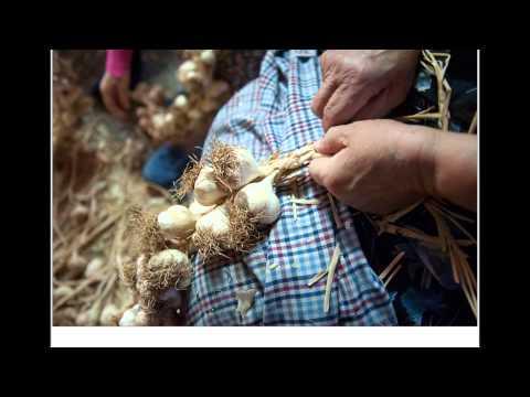 Trenzado de ristras de ajos con ineso moreno alcobendas for Vivero alcobendas