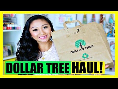 DOLLAR TREE HAUL!