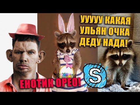 Глад Валакас Покупает Енотика Орео для Утех на Авито
