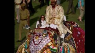 2010.02.28 Elephant Festival, Jaipur, Rajasthan, India