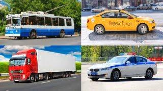 ПРО МАШИНКИ | Транспорт и спецтехника | Развивающий мультфильм | Изучаем транспорт и звуки
