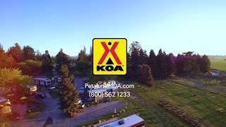 Luxurious RV Resort and Wine Country Lodges at San Francisco North Petaluma KOA
