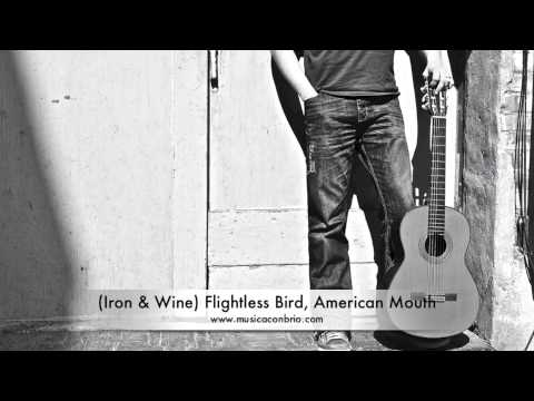 Iron & Wine Flightless Bird, American Mouth Fingerstyle  Jason Delaney