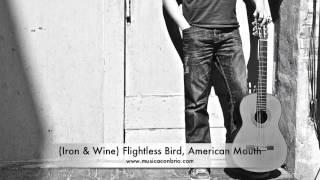 (Iron & Wine) Flightless Bird, American Mouth (Fingerstyle) - Jason Delaney