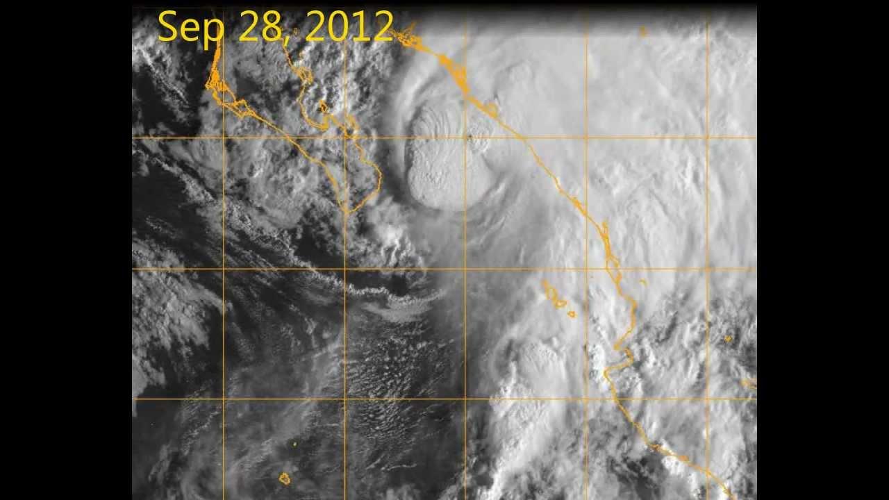 Tropical Storm Dorian spaghetti model: Where could Hurricane Dorian strike?
