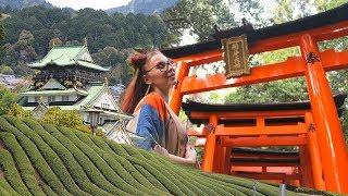 Solo Travel Japan: Osaka & Kyoto