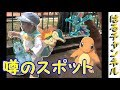 【ポケモンGO】ヒトカゲの巣野毛山動物公園 みなとみらい周辺が熱い2歳児の【PokemonGO】