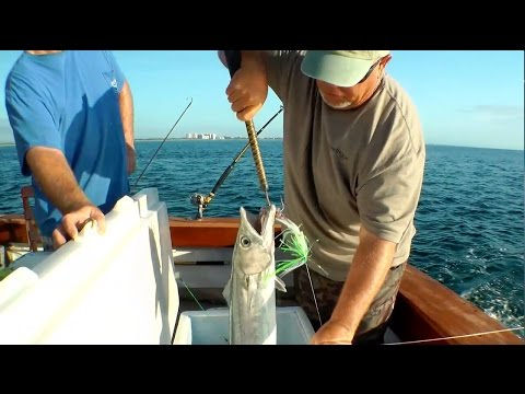 Saltwater Fishing With Planers