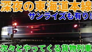 深夜の東海道本線は貨物ラッシュです!
