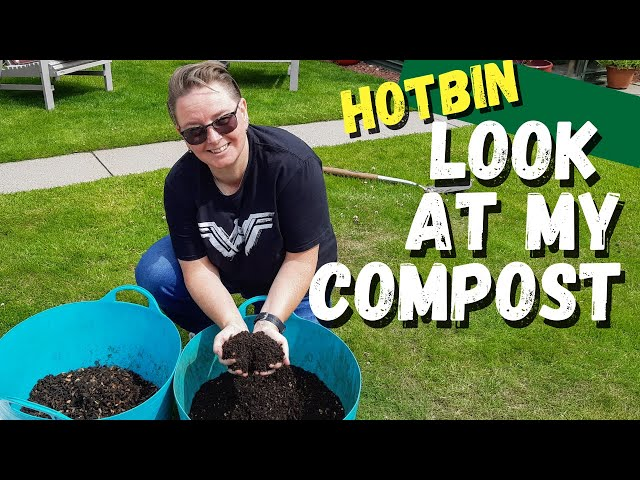 Success with my hotbin composter