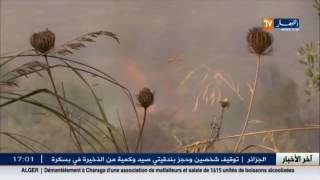 حوادث: إندلاع حريق بغابة داخل حديقة الحيوانات و التسلية ببن عكنون