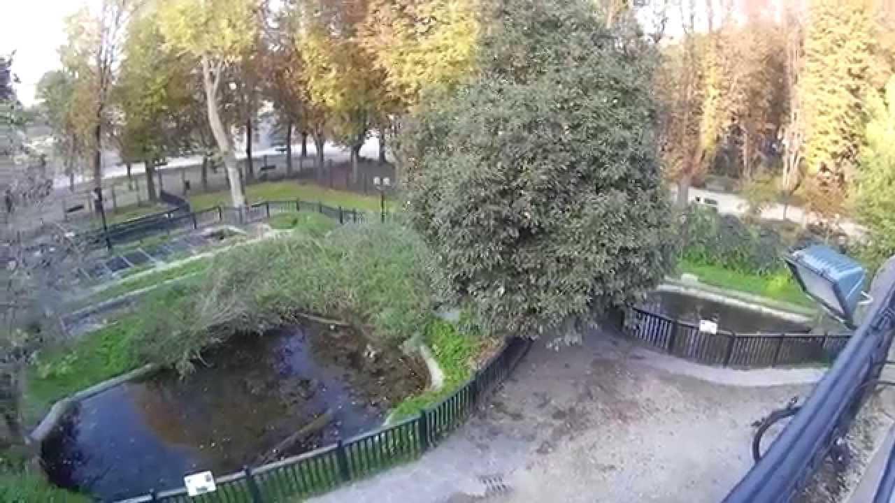 Estanque de agua youtube for Estanque de agua