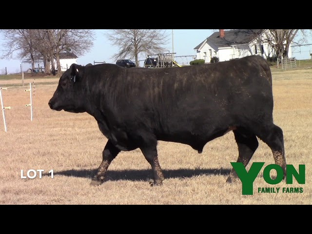 Yon Family Farms Lot 1