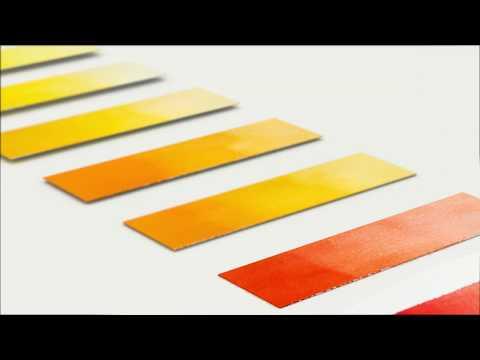 Winsor & Newton Professional Watercolor - Cadmium Free