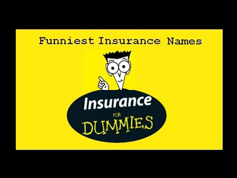 Auto insurance names, all-time funniest