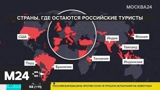 В Россию вернулись туристы, застрявшие в Таиланде - Москва 24