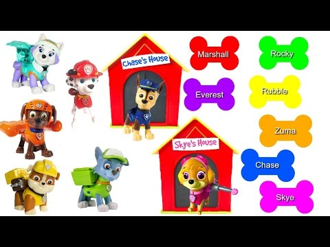 Match Paw Patrol Pups to Dog Bones