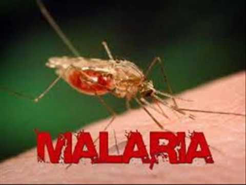 RAIN BERSAT 6 MALARIA मलेरिया ملیریا INFECTION CONTROL ICSP 94 URDU HINDI