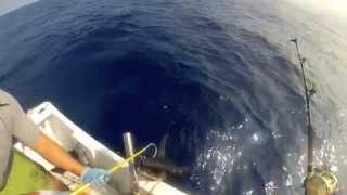 2013 ep 14 palu ahi bust bag shibi yellowfin tuna fishing kona hawaii 07 25 13