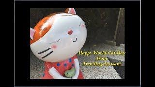 Happy World Cat Day