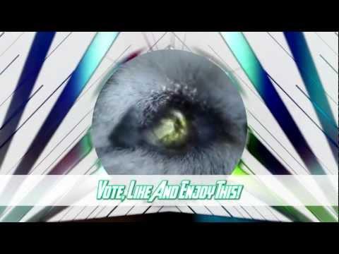 The Top 10 Music Videos «November/Noviembre» (11/11/2012)