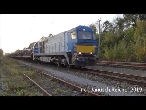 Sichtungen Am 25.10.2019 / Delta Rail,Rail Pool,Hectorrail,RP-Railsystems,RTB,VPS,SGL,TFG,Locon.