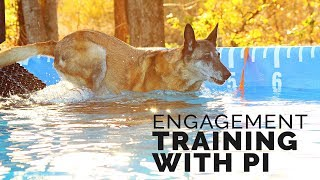Michael Ellis Engagement Training With His Dog Pi
