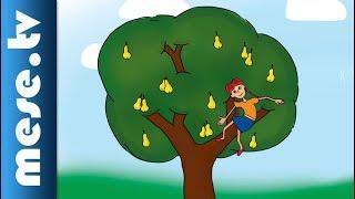 Kék Katica - Sára és a körték (gyerekdal) | MESE TV