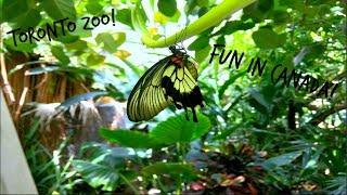 VLOG: Zoo in Canada! | Ella Rose