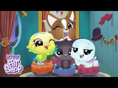 Littlest Pet Shop: A World Of Our Own 'Welcome To Paw-Tucket' 🐾 Season 1 Official Trailer
