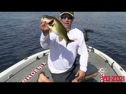 Bobby Lane Search Bait Tactics For Bass