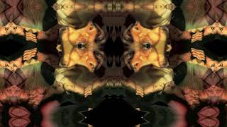 Psychotic Polarity - Dextromethorphan (DXM) & Diphenhydramine (DPH) Trip Report #1
